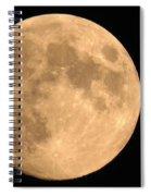 Lunar Mood Spiral Notebook