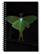 Lunar Moth Spiral Notebook