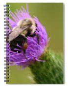 Lunching Atop A Thistle Spiral Notebook