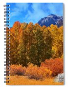 Lundy's Fall Show Spiral Notebook
