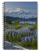 Lupine And Mount Elias Spiral Notebook