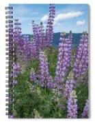 Lupine Blooms Of Bald Hills Spiral Notebook