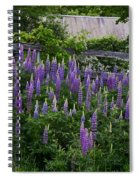 Lupine By The Fence Spiral Notebook