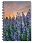 Lupine Dawn Spiral Notebook