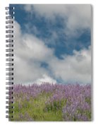 Lupine Field Under Clouds Spiral Notebook