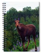 Lupine Loving Moose Spiral Notebook