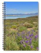 Lupines At Mono Lake Spiral Notebook
