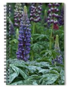 Lupines In The Rain Spiral Notebook
