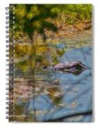 Lurking Gator Spiral Notebook