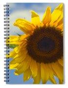 Lus Na Greine - Sunflower On Blue Sky Spiral Notebook