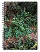 Lush Ferns Of The Forest Spiral Notebook