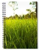 Lush Grass Spiral Notebook