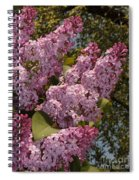 Lush Lilacs Spiral Notebook