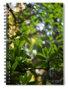 Lush Rhododendron Forest Spiral Notebook