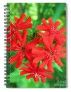 Lychnis Heart Spiral Notebook