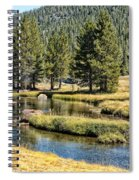 Lyell Canyon Spiral Notebook