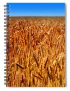 Lying In The Rye Spiral Notebook