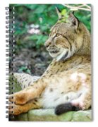 Lynx Spiral Notebook
