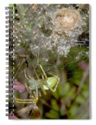 Lynx Spider And Young Spiral Notebook