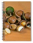 Macadamia Nuts Spiral Notebook