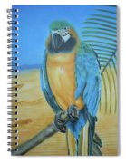 Macaw On A Limb Spiral Notebook