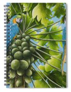 Macaw Parrots In Papaya Tree Spiral Notebook