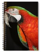 Macaw Profile Spiral Notebook