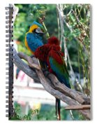 Macaws Of Color24 Spiral Notebook