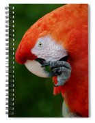 Macaws Of Color32 Spiral Notebook