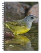 Macgillivrays Warbler Spiral Notebook