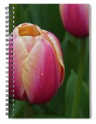 Mackinac Tulip 10386 Spiral Notebook