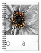 Macro A Trois Poster Spiral Notebook