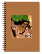 Macro Copperhead Spiral Notebook