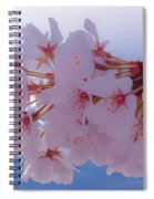 Macro Dc Cherry Blossoms Spiral Notebook