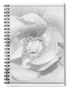 Macro Image Of A Rose Spiral Notebook