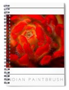 Indian Paintbrush Poster Spiral Notebook