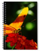 Macro Of An Orange Butterfly Spiral Notebook