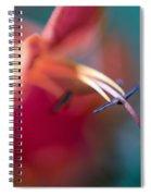 Macro Study Spiral Notebook