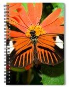 Madeira Butterfly Spiral Notebook
