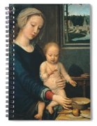 Madonna And Child With The Milk Soup Spiral Notebook