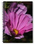 Magenta Cosmos 2 Spiral Notebook