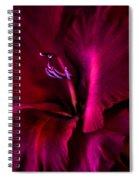 Magenta Gladiola Flower Spiral Notebook