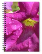 Magenta Majesty Spiral Notebook