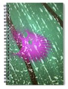 Magenta Thing Spiral Notebook