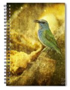 Magic At The Feeder... Spiral Notebook