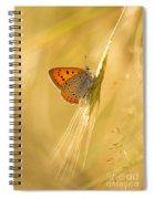 Magic Garden II Spiral Notebook
