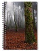 Magic Light Spiral Notebook