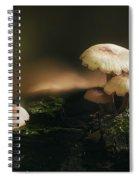 Magic Mushrooms Spiral Notebook