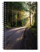 Magic Of Redwood Spiral Notebook