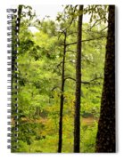 Magic Of The Golden Forest Spiral Notebook